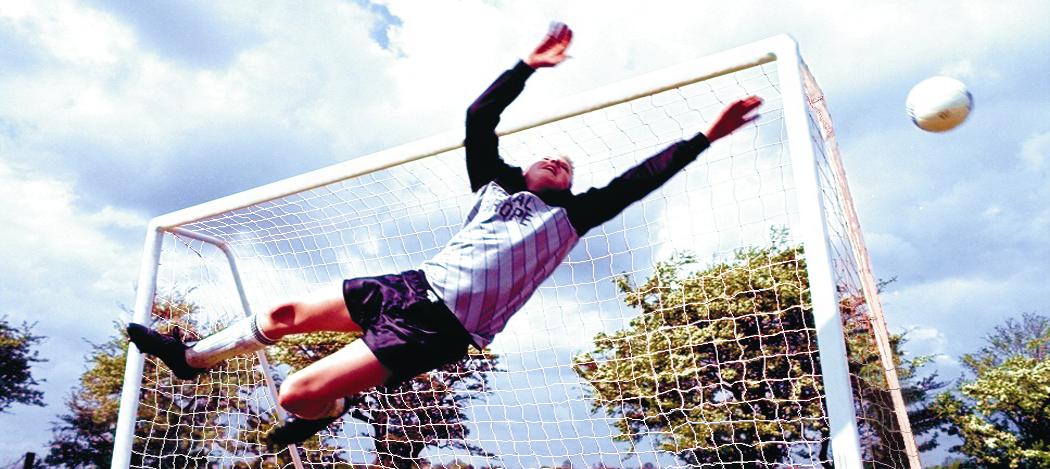 Original Garden Goals - Football goals used at Junior Club Football